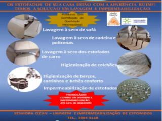 Sra. Clean - Lavagem À Seco De Sofá E Impermeabilização