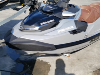 Jet Ski Sea Doo Gtx Ltd 300 2019 - Unico Dono