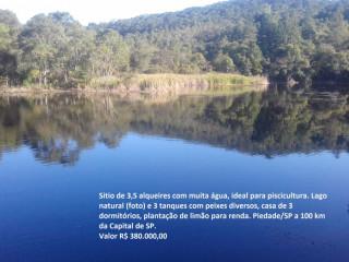 Sitio Em Piedade/sp - 3,5 Alqueires Com Casa, Lago, Tanques Com Peixes E Nascente